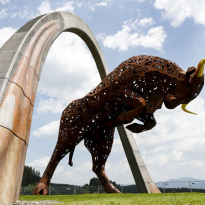 Austrian Grand Prix plans 'unaffected' by pandemic