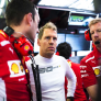 'Vettel isn't Schumacher's heir and should be Leclerc's number two'